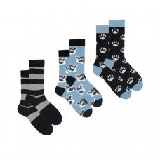 Набір шкарпеток Sammy Icon Pumpkin set