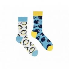 """Шкарпетки Sammy Icon """"Alboa"""""""